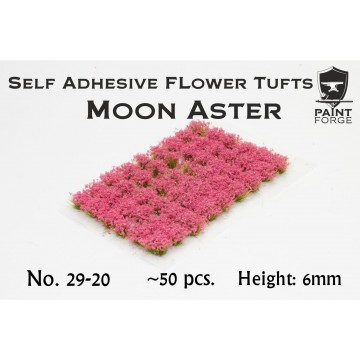 Moon Aster